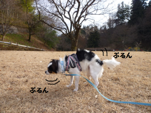 20121217-6.png