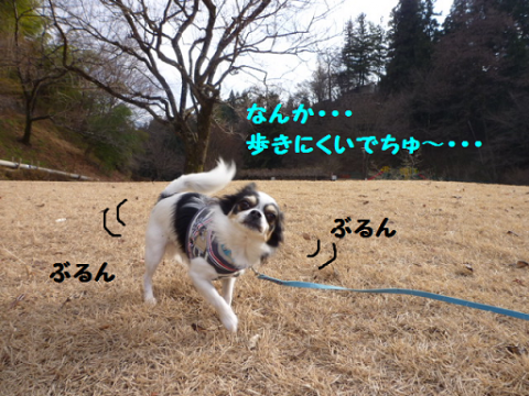 20121217-7.png