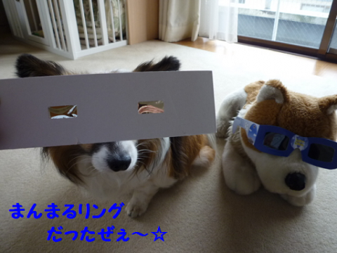 2012521-1.png