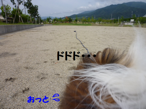 2012625-4.png