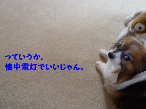2012628-6.png