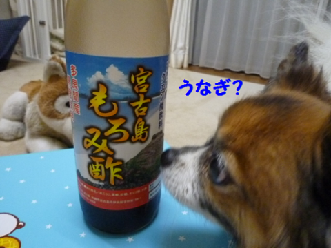 2012722-11.png
