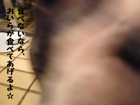 2012926-21.png