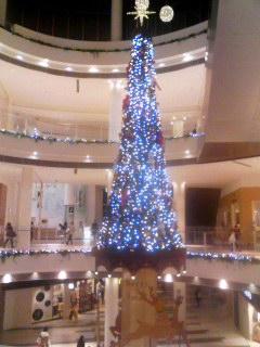 クリスマスツリー 131220_2050~001