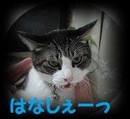 201203032013438f5b.jpg