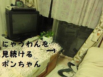 IMG_7949 2012 (11