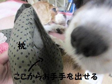 IMG_9094 2012 (19