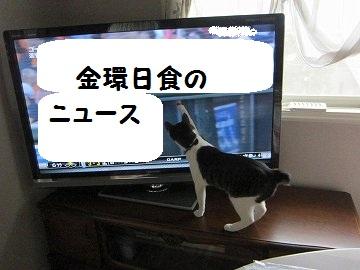 IMG_8874 2012 (44
