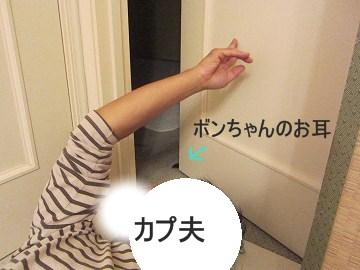 IMG_9822 2012 (19