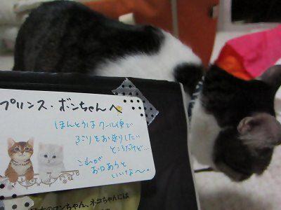 IMG_0678 2012秋 (31)