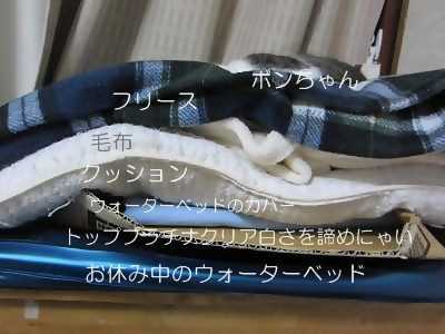 IMG_0139 2012秋 (43)