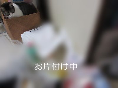 IMG_0887 2012秋 (27)