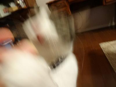 DSC01816 2012秋 (61)