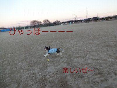 DSC01949 2012冬 (11)