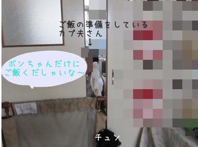 IMG_9361 2012 (19
