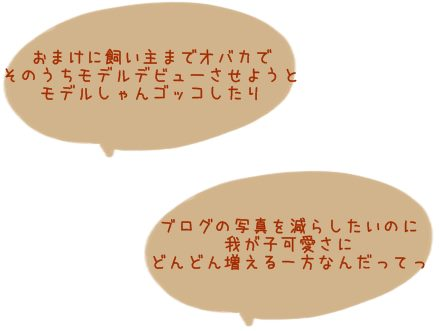 IMG_5831 20135月 (222
