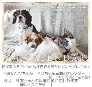 2013_wanko_nyanko_calendar_300_20121209155316.jpg