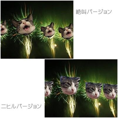cats_20120819015743.jpg