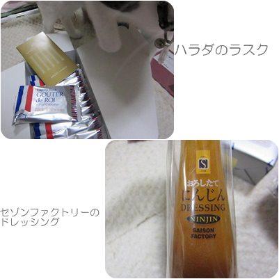 cats_20121105194628.jpg