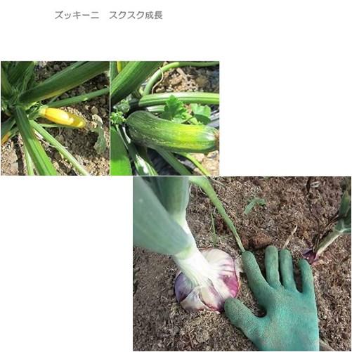 p_20130619165856.jpg