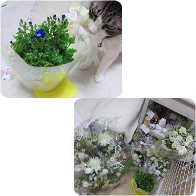 page_20130117235555.jpg