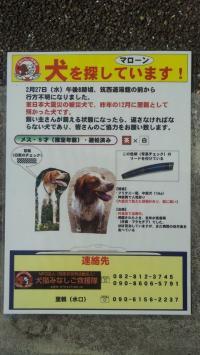 繝槭Ο繝シ繝ウ_convert_20130303101112