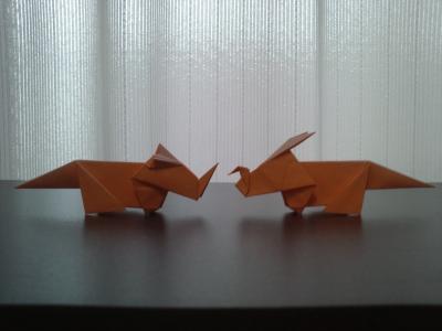 Triceratops_variation.jpg