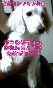 l-d-g216.jpg