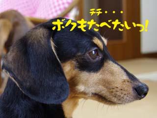 2012071404.jpg