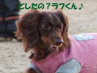 201301030201.jpg