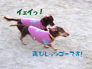 2013010310.jpg