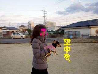 2013010312.jpg