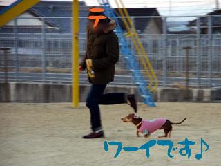 2013010324.jpg