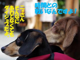 2014010507.jpg