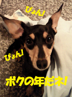 2014010803.jpg
