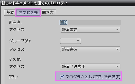 script_access_exec.jpg