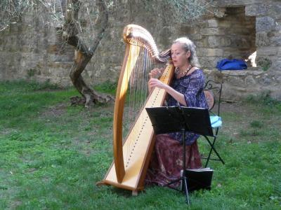 2012.10.14 ハープ奏者