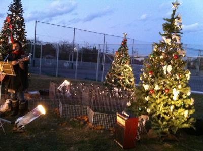 蓮池のクリスマス3