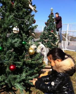 蓮池クリスマス2