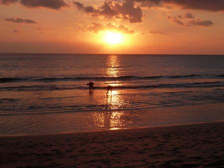 海に沈む夕日も美しい。