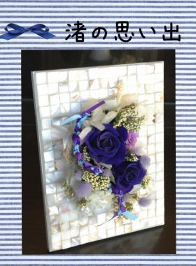 1050_convert_20120819082106.jpg