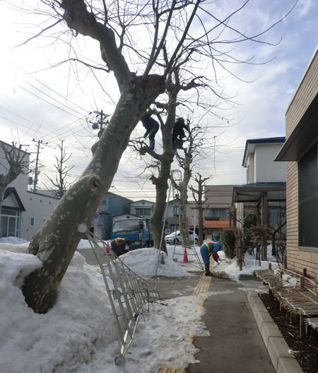 2014-1-30近所の光景②