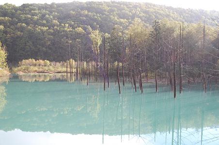 blue pond 1