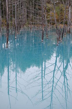 blue pond 3