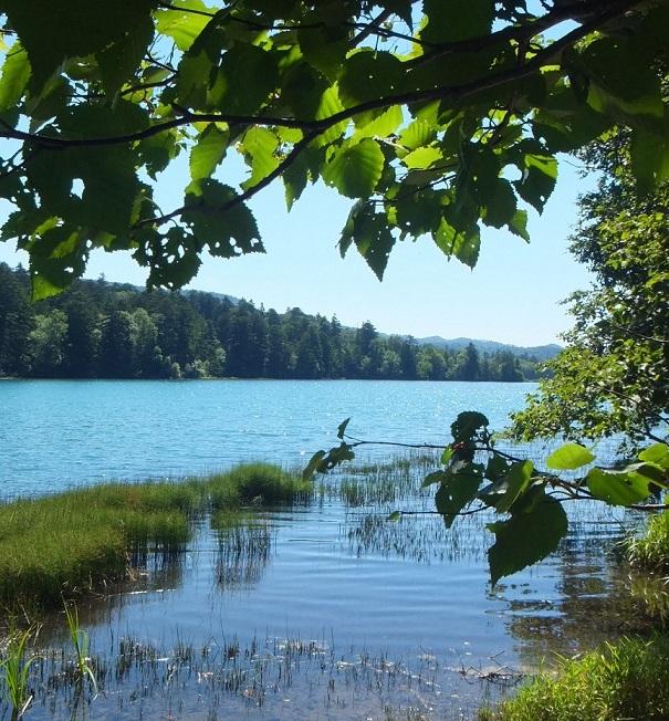 オンネトー湖その2