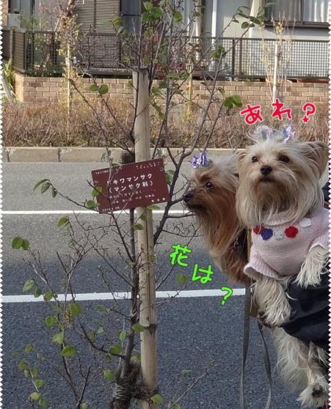 02_20130319005145.jpg