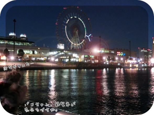 10_20121227170642.jpg
