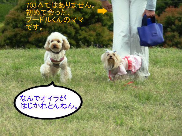 10_20130429070344.jpg