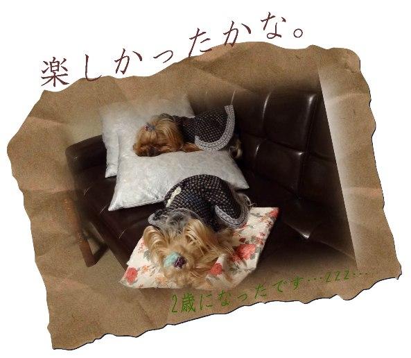11oyasumi.jpg
