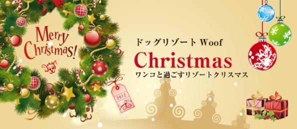14_20121219002240.jpg